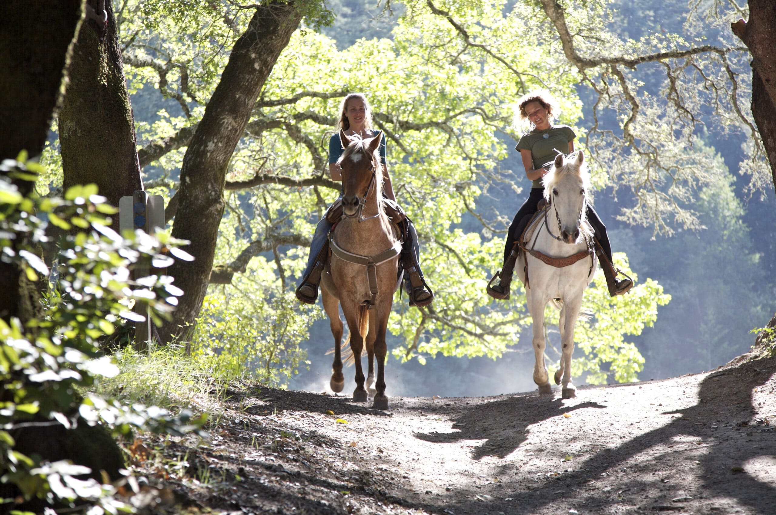two white women riding horses on dirt path through sunny wooded area